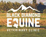 black-diamond-equine